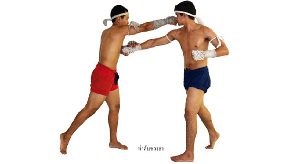 แม่ไม้มวยไทย : ดับชวาลา