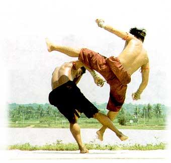 เถรกวาดลาน ท่ามวยไทยที่ใช้ป้องกันและตอบโต้เมื่อคู่ต่อสู้เหวี่ยงแข้ง